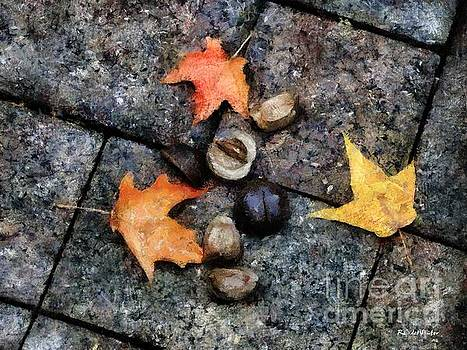 Leftovers by RC deWinter