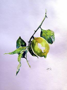 Lemon I - perfect gift for your kitchen by Kovacs Anna Brigitta