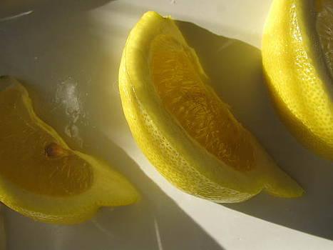 Lemon Slices by Lindie Racz