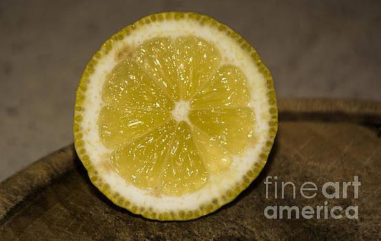 Lemon by Sonya Staneva