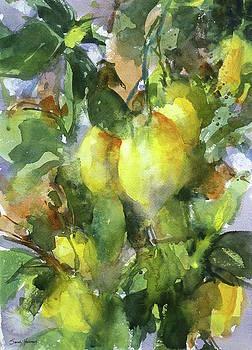 Lemon Tree,Very Pretty by Sarah Yeoman