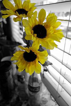 Lemon Yellow by Kip Krause