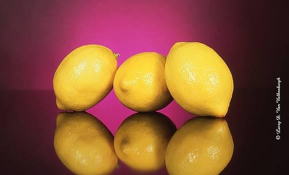 Lemons for Lemonaid by Larry Van Valkenburgh