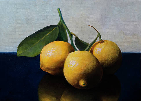 Lemons with Leaves by Anthony Enyedy