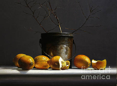 Lemons With Red Twig Dogwood by Lawrence Preston