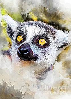 Lemur art by Justyna JBJart