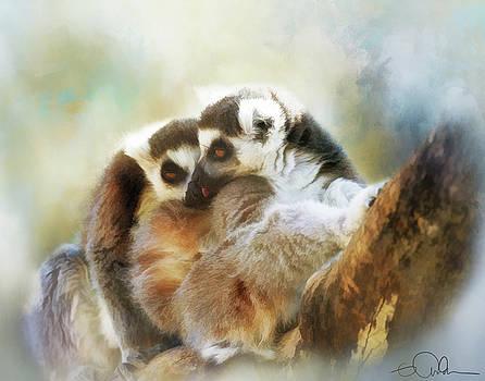Lemur Cuddle by Gloria Anderson