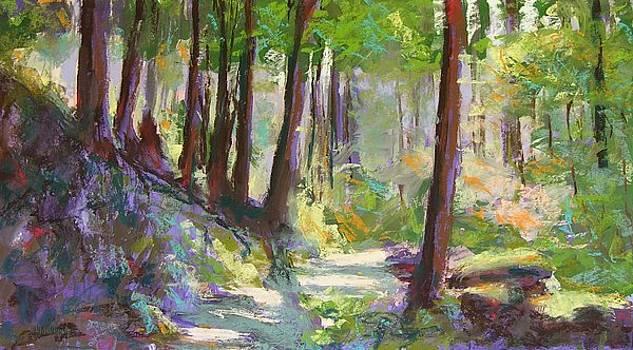 Lena Lake Trail Shadows by Mary McInnis