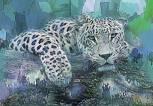 Leopard Abstract by Galen Valle