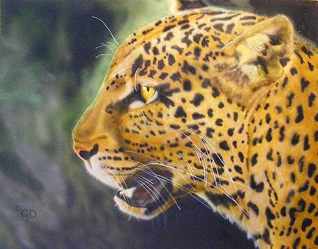 Leopard by Crispin  Delgado