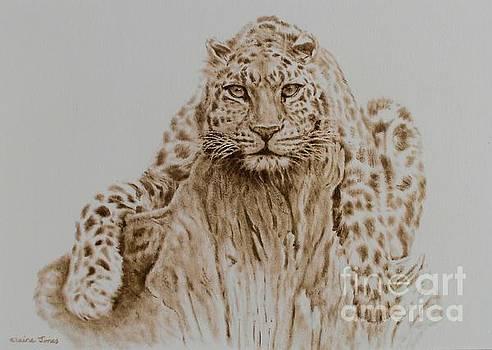Leopard by Elaine Jones
