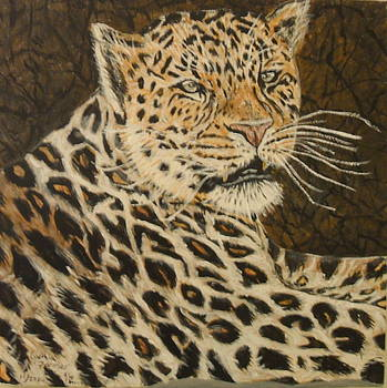 Leopard fourth of four by Cynthia Farmer
