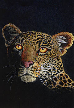 Leopard in the Dark by Lorraine Foster