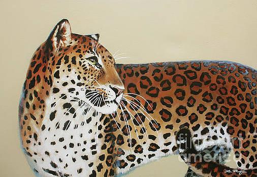 Leopard by Lin Petershagen