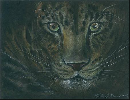 Leopard by Linda Nielsen