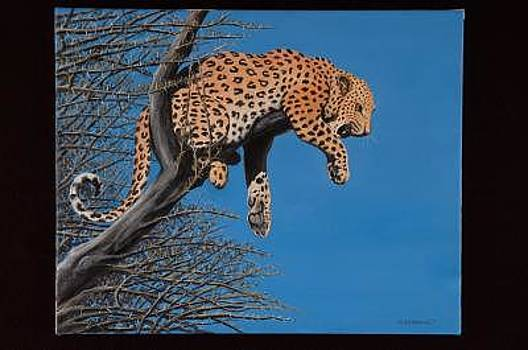 Leopard Resting In A Tree by Joseph Greenawalt