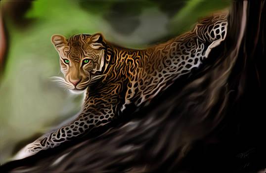 Leopard by Vic Weiford