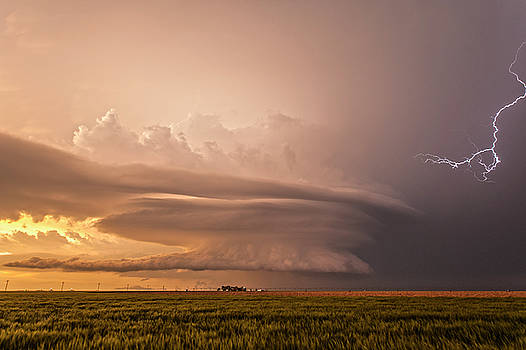 Leoti, Kansas by Colt Forney