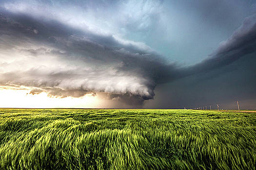 Leoti's Masterpiece - Incredible Storm and Waving Wheat in Western Kansas by Sean Ramsey