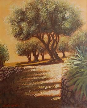 les colettes jardins de Renoir by Santo De Vita