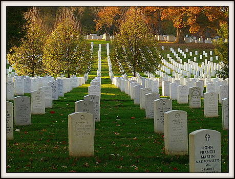 Lest we Forget by Lynette McNees