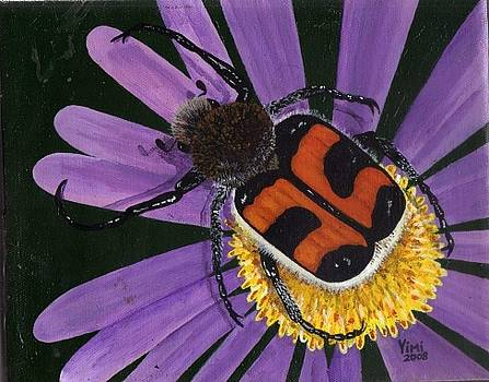 Let It    Bee Beetle by James Parker