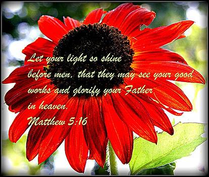 Let your Light so Shine by Robert Babler