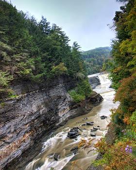 Letchworth Lower Falls by Tim Buisman