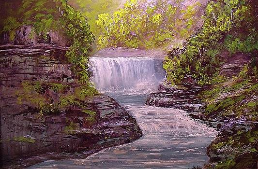 Letchworth State Park by Michael Mrozik