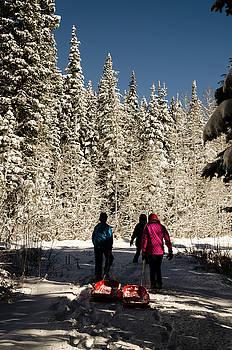 Lets go sledding by Carl Nielsen