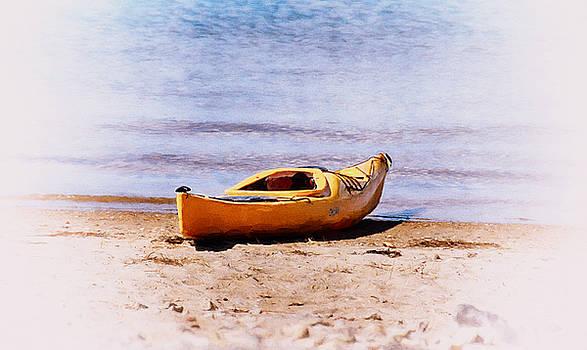 Let's Kayak by Tricia Marchlik