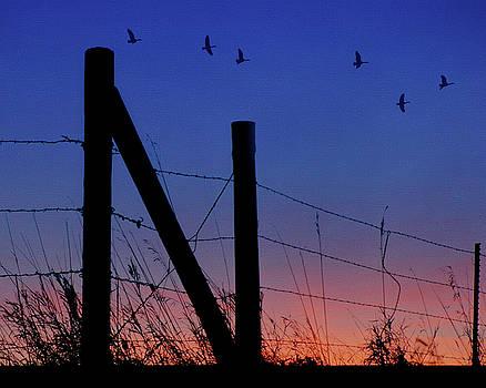 Nikolyn McDonald - Letter N - Nebraska - Sunset