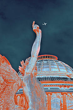 Letting Fly by Menega Sabidussi