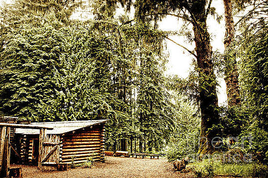 Lewis and Clark's Fort Clatsop in the Old Growth Forest by Lincoln Rogers