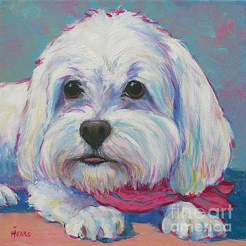 Lhasa Apso by Vickie Fears