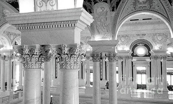 Library of Congress 2 black and white by E B Schmidt