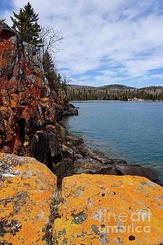 Lichen Rocks by Sandra Updyke