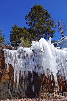 Lichens and Ice on the Rocks by Sandra Updyke