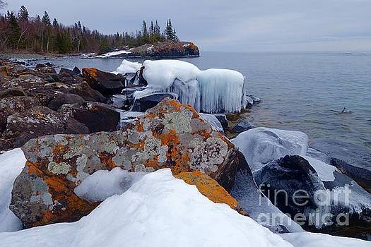 Lichens and Ice by Sandra Updyke