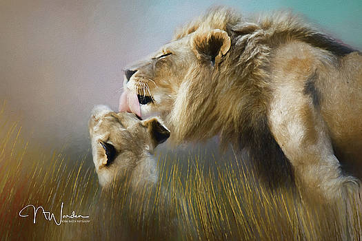 Lick of Love by Norma Warden