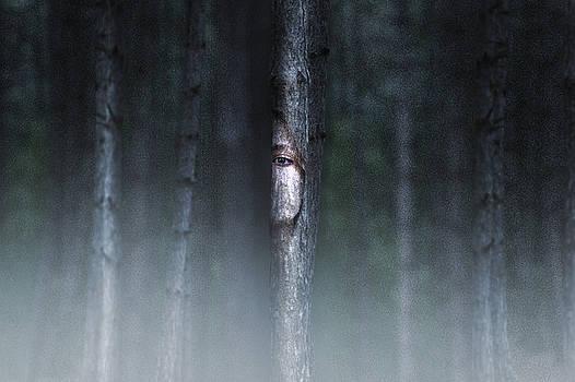 Life forest by Diana Kondra