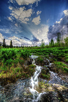 Life giving stream by Bryan Carter