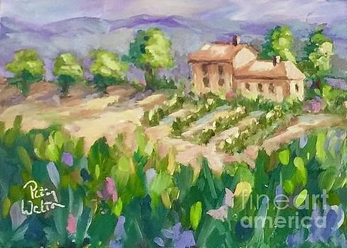 Life in Tuscany by Patsy Walton