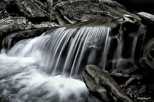Life Water by Wesley Nesbitt