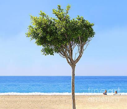 Life's A Beach by Susan Wall