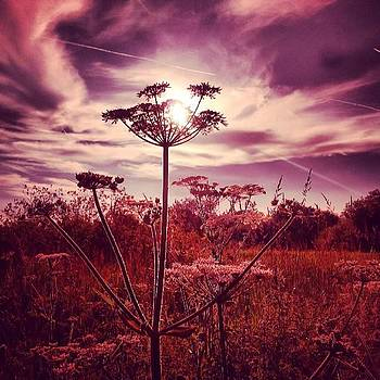 #lifethroughmysunnies Dramatic Skies by Jennie Davies
