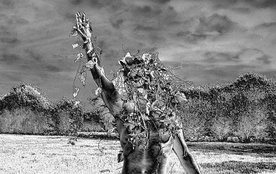Lift Up Thy Hand by Oberon   Ahura Star