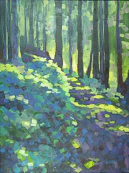 Light Across the Trail 2 by Mary McInnis