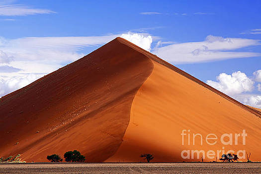 Light and shadow in the Namib Desert by Wibke W