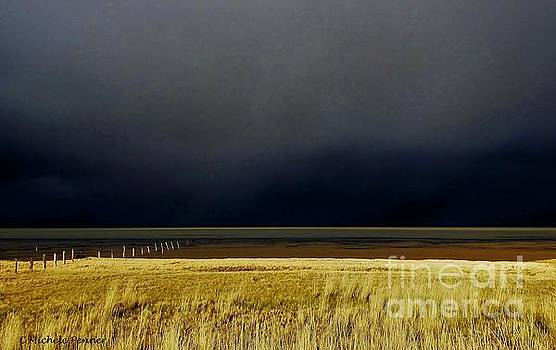 Light Before the Storm by Michele Penner